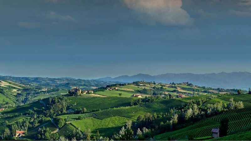 Piedmont country wine wedding venues